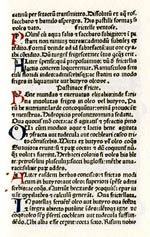 Oldcook: cookery books in medieval Europe - Platine